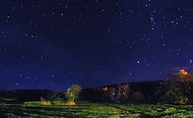 holidays_Stargazing