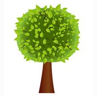 dfl tree