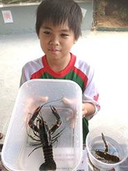 Big Head Prawns and lobsters galore! Photo source: Fish@BigSplash