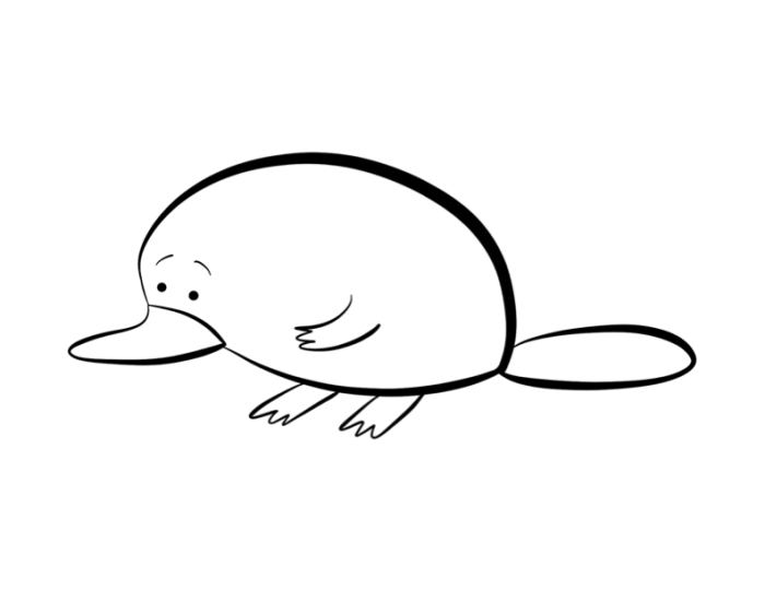 Colour this thoughtful looking Platypus, Photo source: http://www.colordad.com